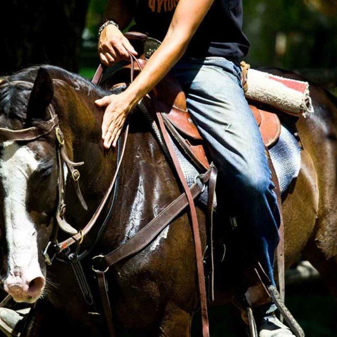 Passeggiata a cavallo hotel germania